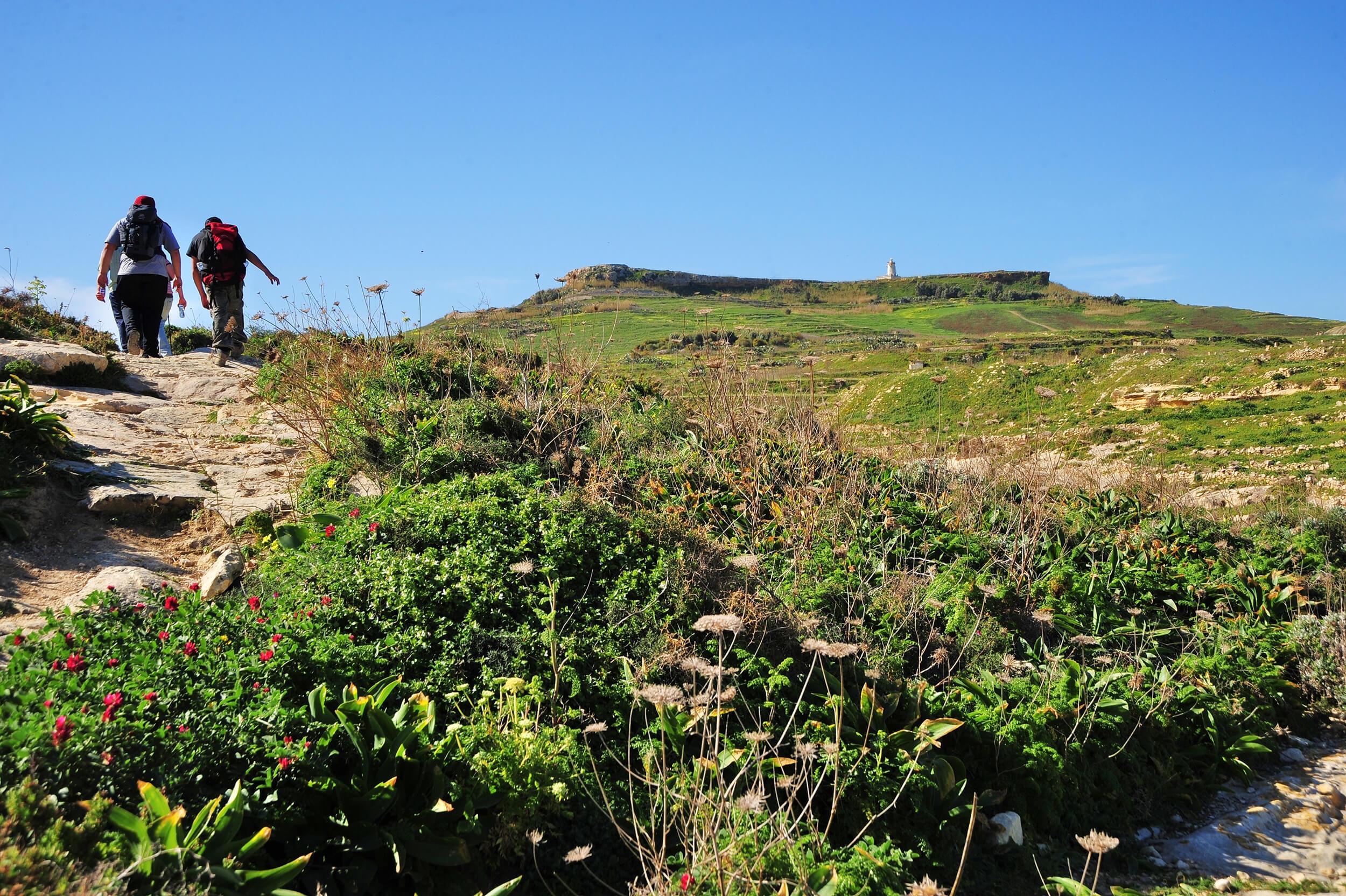 Walking in Gozo