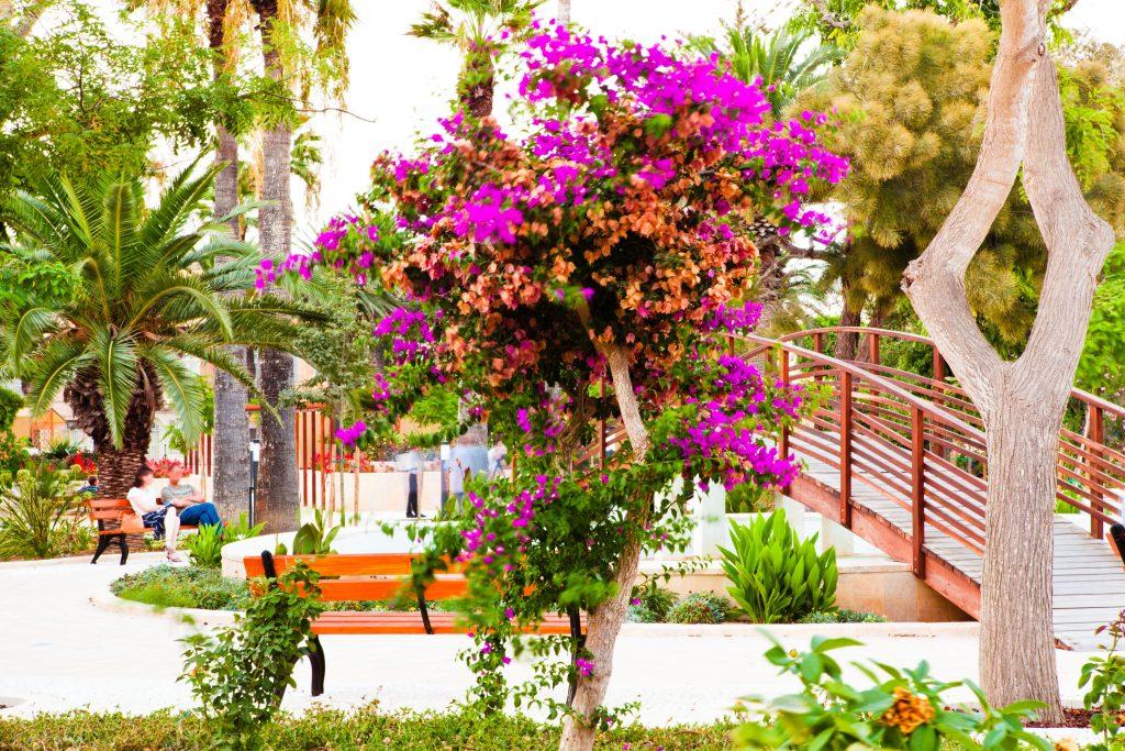 Villa Rundle Garden in Rabat (Gozo)