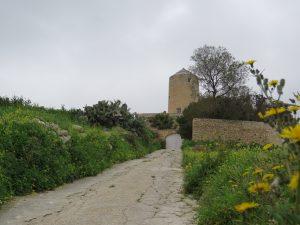 windmill in gozitan countryside
