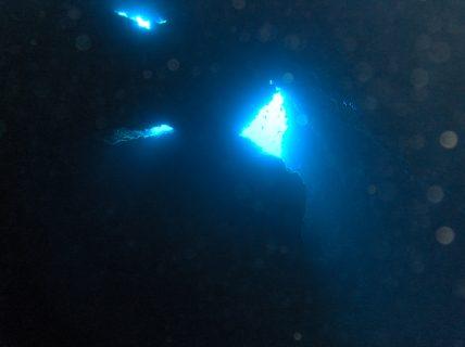 Bottleneck-Cave-Gozo-Diving-1-428x320