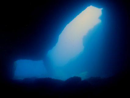 Calypso-Tunnel-Gozo-Diving-2-1-426x320
