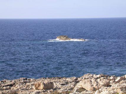 Crocodile-Rock-Gozo-Diving-1-427x320