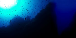 Diving at Ras-il-Ħobż-Gozo