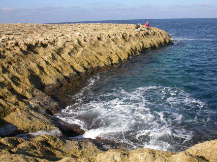 Ta'-Swejda-The-Canyons-Gozo-Diving-1-1-427x320