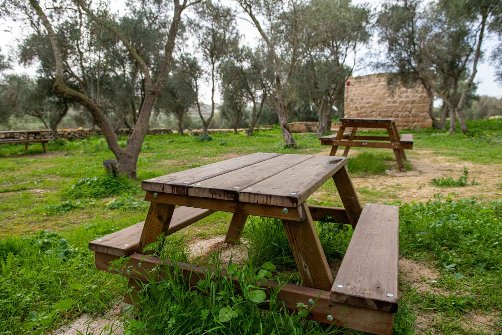Benches-at-Blankas